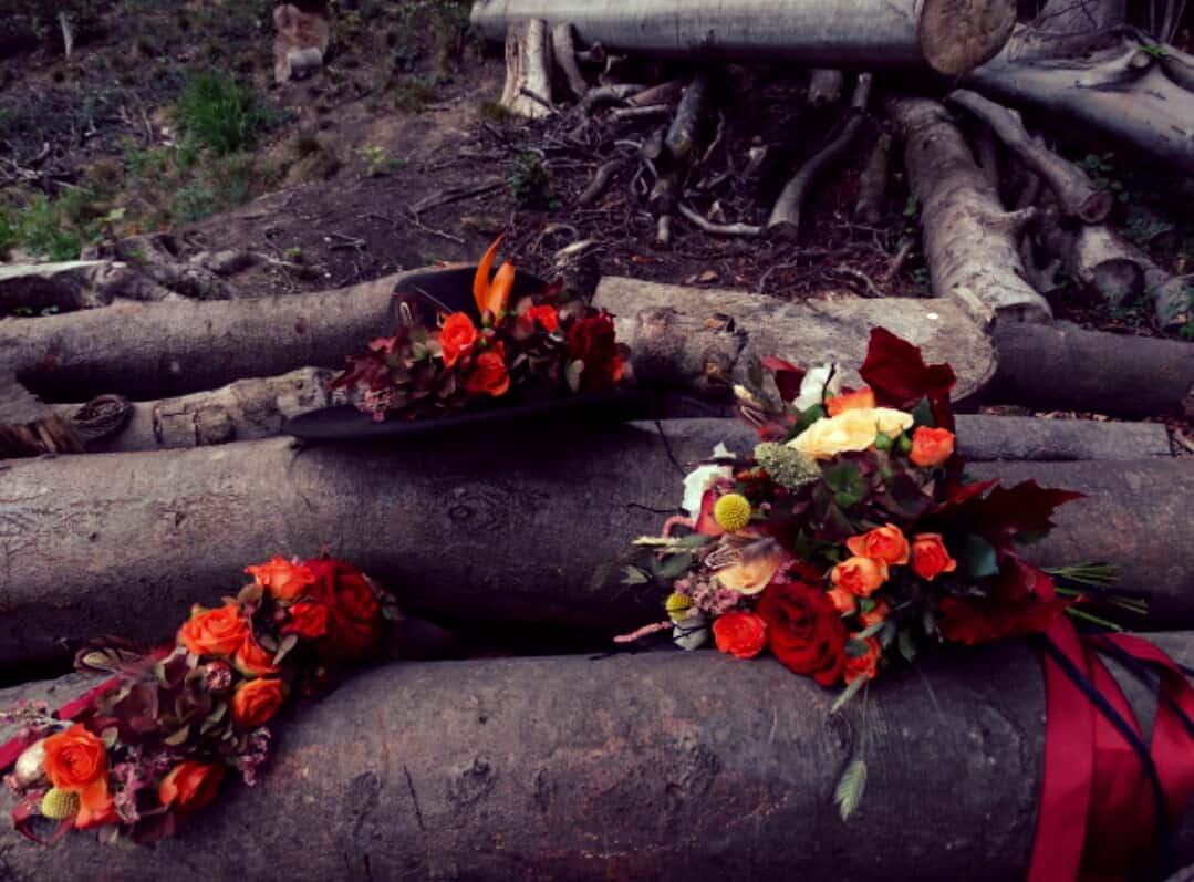 flowers on logs